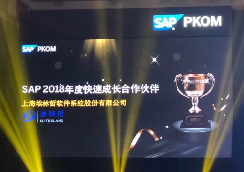 埃林哲荣获SAP 2018年度快速成长合作伙伴奖