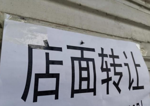 【助力實體轉型】蕭之周啟動100位美容主播扶持計劃