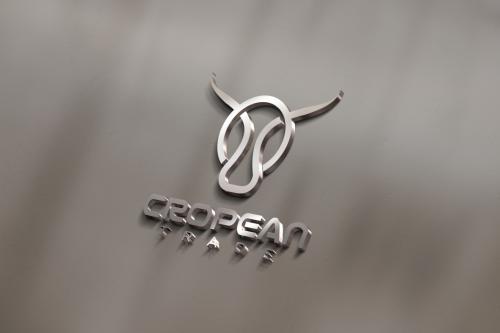 克比亚国际(Cropean Trade):为用户提供更加专业的交易服务