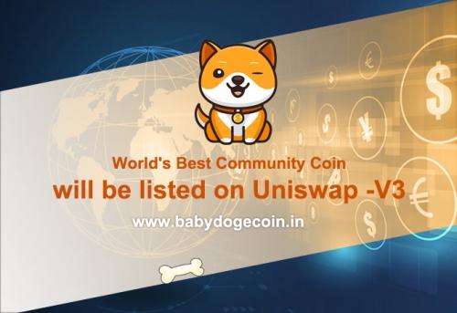 8月3日宝贝狗BabyDogeCoin上线Uniswap-V3
