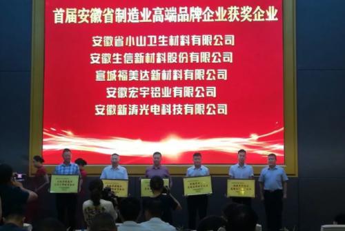 喜讯 新涛荣获安徽省制造业高端品牌培育企业称号