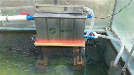 鱼池过滤系统.jpg