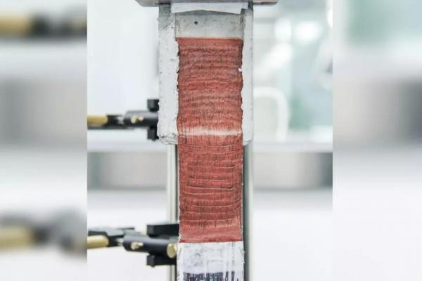 APF-5000剥离实验效果.jpg