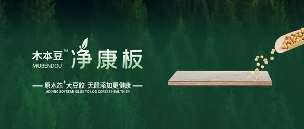 净呼吸 净生活 | 安全环保无甲醛 认准木本豆净康板