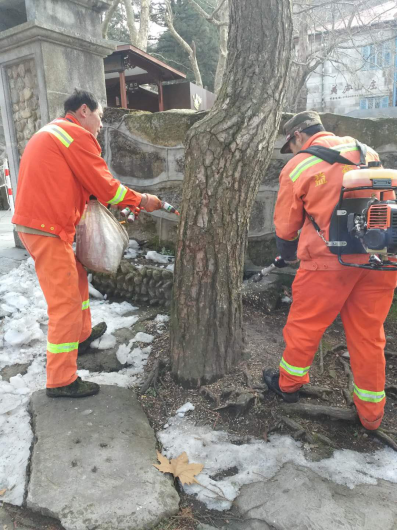 杭州益森键助力庐山管理局开展松树注射免疫剂工作